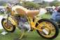 10th-Quail-Motorcycle-Gathering-Andrew-Kohn-12