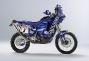 ktm-640-adventure-richard-sainct