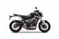 2014-yamaha-mt-09-street-rally-studio-01