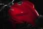 2015-Ducati-Monster-821-66