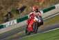 2015-Ducati-Panigale-R-09.jpg