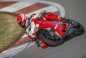 2015-Ducati-Panigale-R-25.jpg