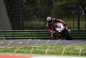 2015-Ducati-Panigale-R-Chaz-Davies-01.jpg