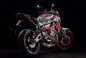 2015-Yamaha-MT-07-Moto-Cage-12