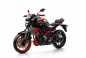 2015-Yamaha-MT-07-Moto-Cage-23