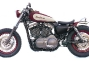 deus-ex-machina-new-blood-sportster-12