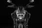 2015-Ducati-Diavel-Titanium-EICMA-05