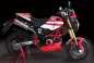 Gromcati-Ducati-Monster-Honda-Grom-X-Speed-Motorland-05