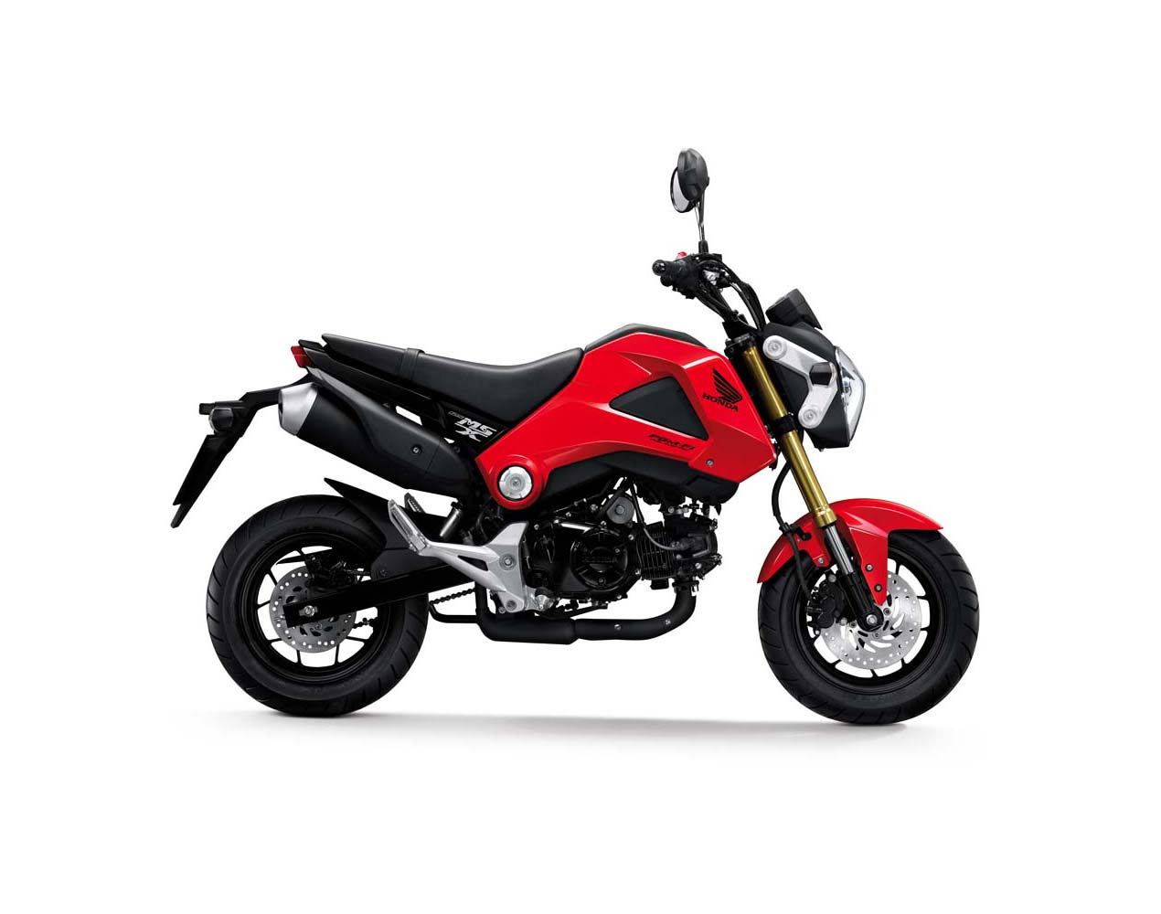 Say Hello To The 2013 Honda Grom Asphalt Rubber