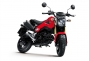 Say Hello to the 2013 Honda...Grom? thumbs 2013 honda msx125 10