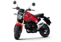 Say Hello to the 2013 Honda...Grom? thumbs 2013 honda msx125 11