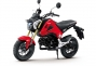 Say Hello to the 2013 Honda...Grom? thumbs 2013 honda msx125 13