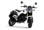 Say Hello to the 2013 Honda...Grom? thumbs 2013 honda msx125 15