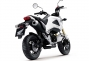 Say Hello to the 2013 Honda...Grom? thumbs 2013 honda msx125 16