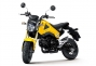 Say Hello to the 2013 Honda...Grom? thumbs 2013 honda msx125 20