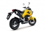 Say Hello to the 2013 Honda...Grom? thumbs 2013 honda msx125 22
