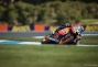 sunday-phillip-island-motogp-scott-jones-18