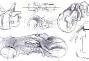 tron-legacy-lightcycle-concept-sketch-art-8